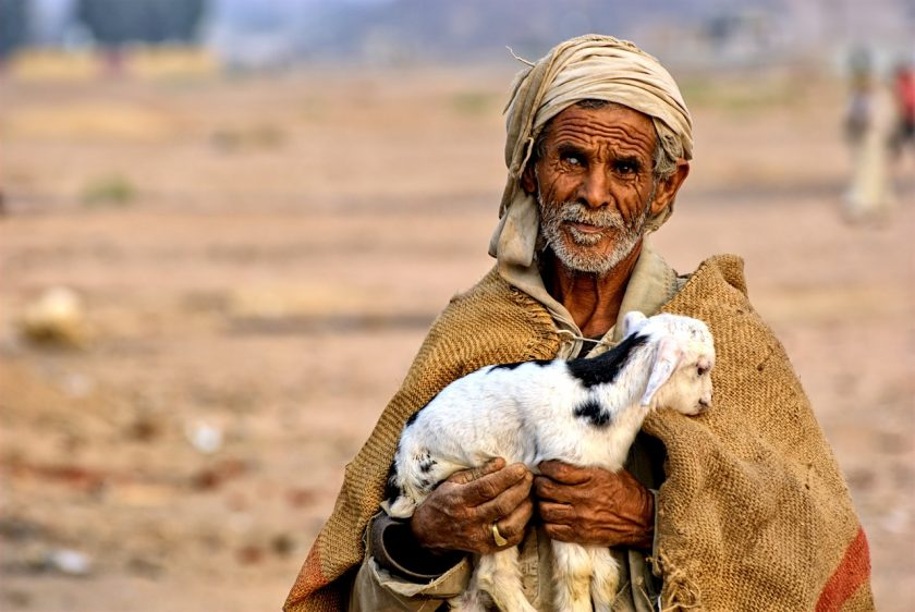old egyptian man with lamb in his arm